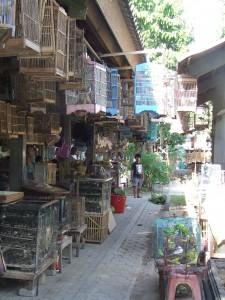 Vogeltjesmarkt Yogyakarta