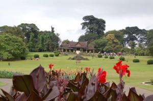 Orchideeënhuis Botanische Tuin