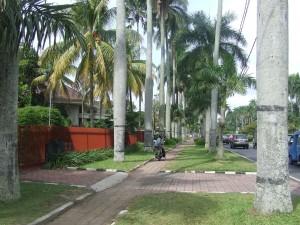 Jalan Ijen in Malang